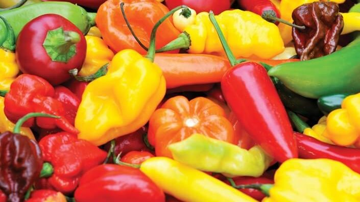 What Is Red Savina pepper?